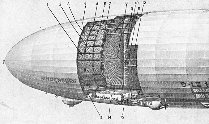 AN AIRSHIP'S GENERAL DESIGN is illustrated by this sectionalized diagram of the Hindenburg