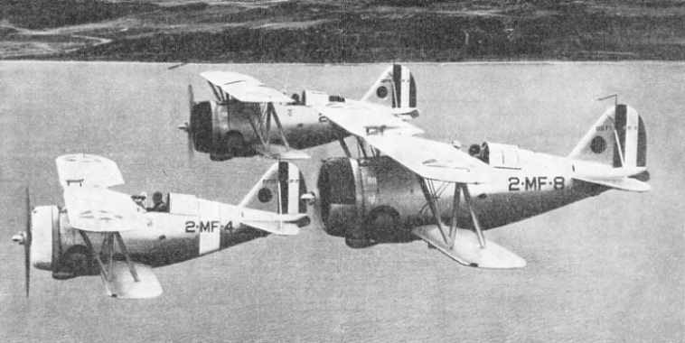 Single-Seat Grumman Fighters